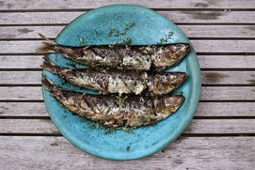 Ruth_Sharif_Nutrition_blog_post_are_sardines_a_super_food_01