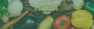 Ruth_Sharif_Nutrition_contact_main_banner